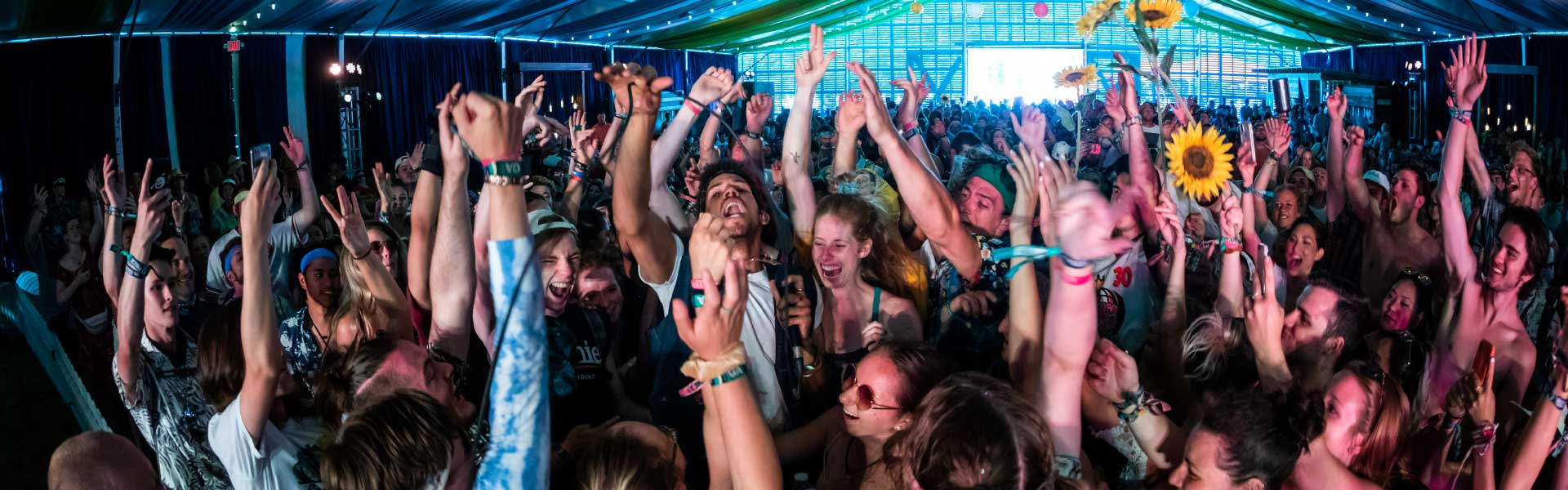 Festival goers hands in the air