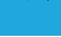 Zyn logo